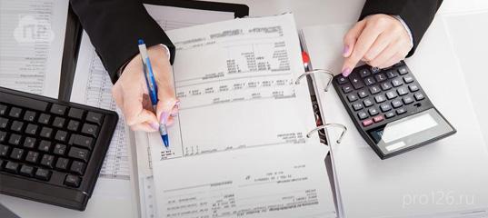 Электронная отчетность в ставрополе статистика предоставление отчетности в электронном виде